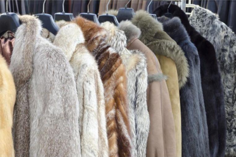 Fur Phenomenon: Fab or Drab?